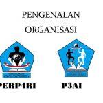 Peranan Organisasi PerP4RI di Pelatihan 12 x Gratis di Pecenongan Jakarta