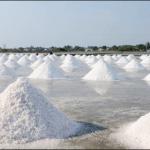 Arti Garam Dan Terang Dunia Bagi Manusia