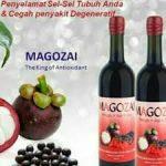 Magozai vitamin cepat hamil di Jawa Barat Hub wa 08159270283